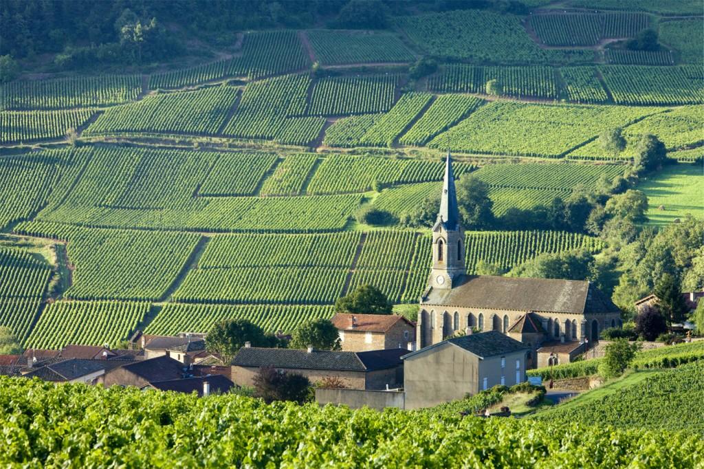 climats-de-bourgogne-burgundia-tour