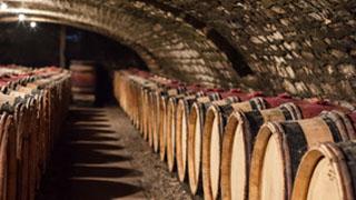 cave-1-burgundia-tour