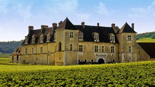 clos-vougeot-2-burgundia-tour