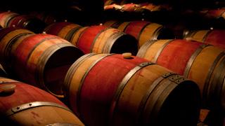 rencontre-vignerons-burgundia-tour